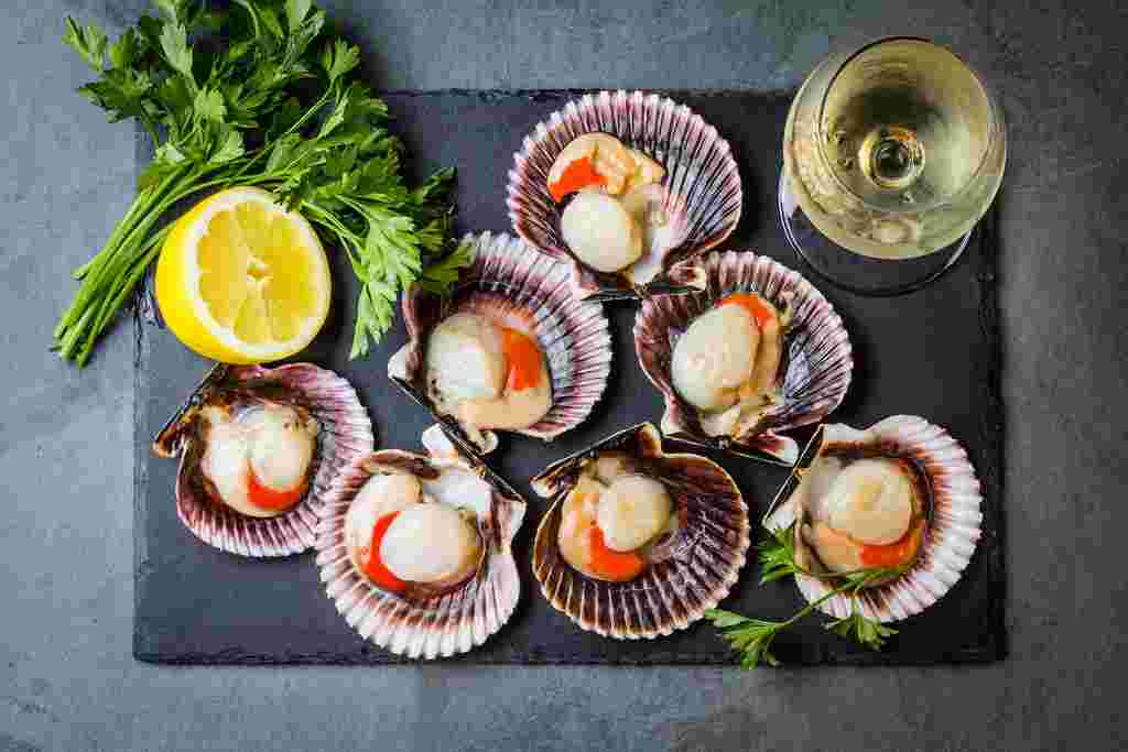 What Are Scallops and What Do Scallops Taste Like